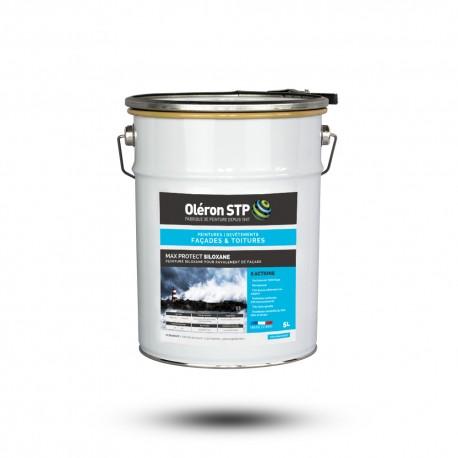 Peinture façade siloxane - MAX PROTECT SILOXANE