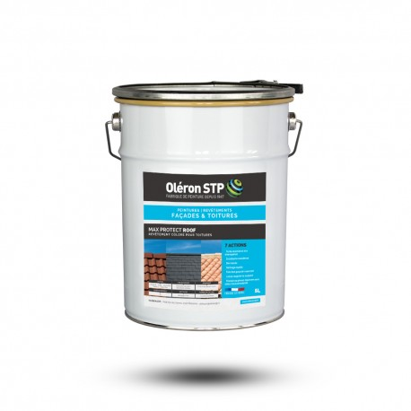 Peinture pour toiture - MAX PROTECT ROOF