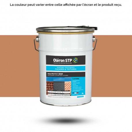 Peinture toiture sable 17 5L